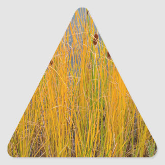 Colorful Cattails Triangle Sticker