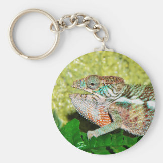 Colorful Chameleon with open mouth Keychain