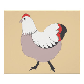 """Colorful chicken, 24"""" x 20"""", Poster Paper"""