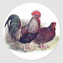 Colorful Chicken Stickers