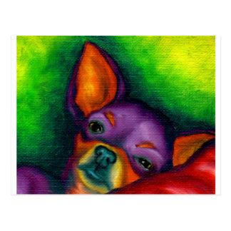 Colorful Chihuahua Postcard
