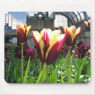 Colorful City Tulips Mouse Pad