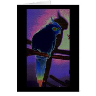 Colorful Cockatiel Card