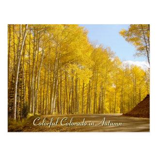Colorful Colorado in Autumn Postcard