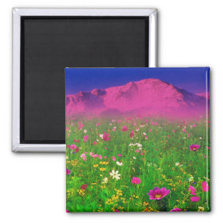 Colorful Colorado, Pikes Peak Mountain Refrigerator Magnets