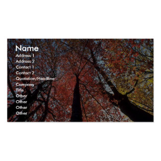 Colorful Colors of the fall season, Upstate New Yo Business Card Template