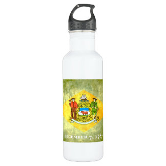 Colorful Contrast Delawarean Flag Stainless Steel Water Bottle