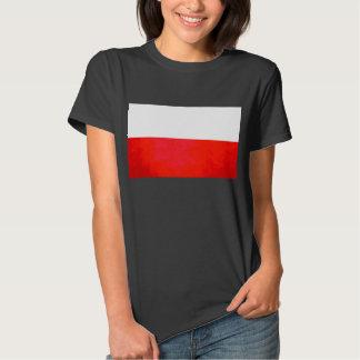 Colorful Contrast PolishFlag T-Shirt