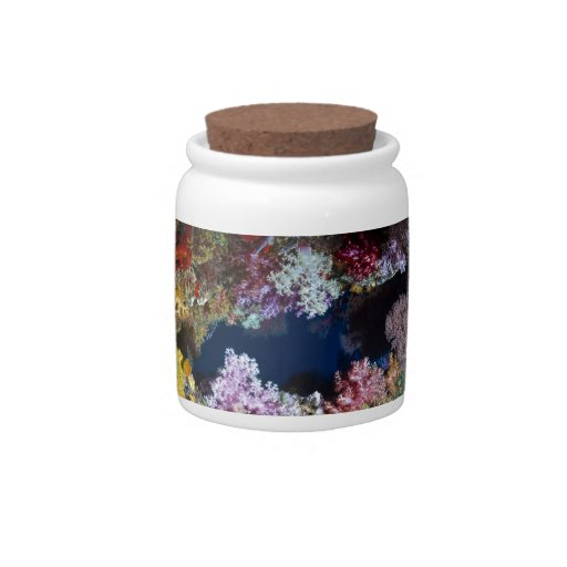 Colorful coral reef candy jars