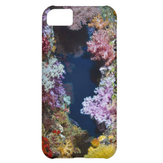 Colorful coral reef iPhone 5C cases