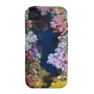Colorful coral reef vibe iPhone 4 cover