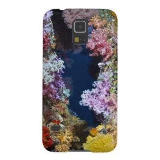 Colorful coral reef galaxy nexus cases