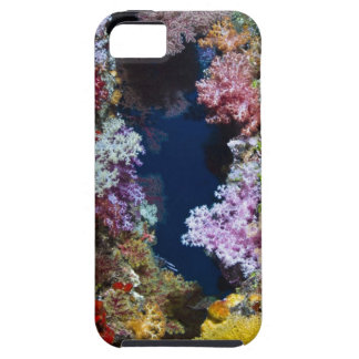 Colorful coral reef iPhone 5 covers