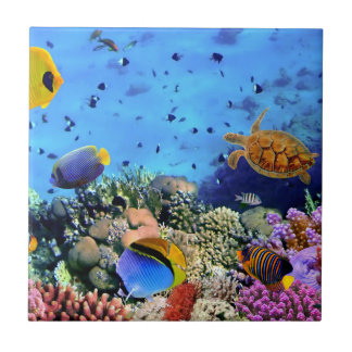 Colorful Coral Reef Critters Tile