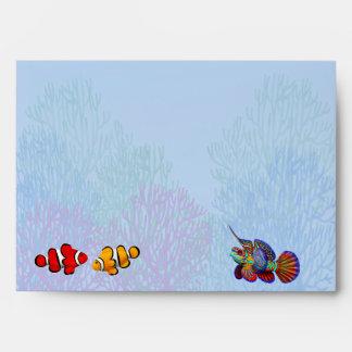 Colorful Coral Reef Fish Envelope
