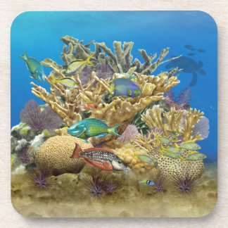 Colorful Coral Reef Scene Coasters