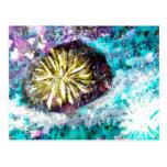 Colorful Coral Reef Sea Urchin Postcard