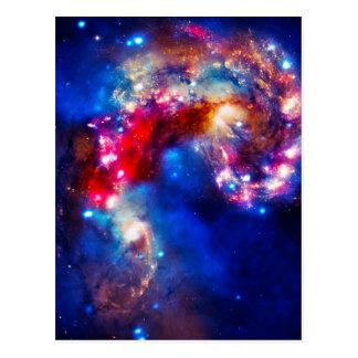Colorful Cosmos Postcard