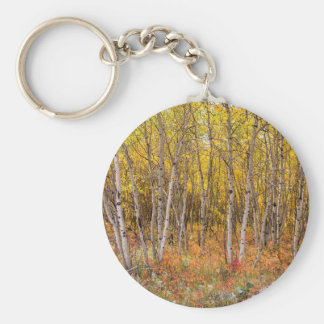 Colorful Countryside Keychain