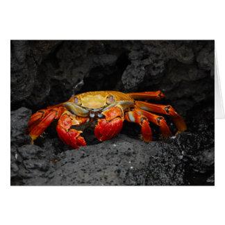 Colorful Crab Card
