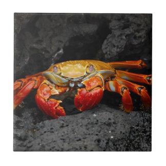 Colorful Crab Ceramic Tile