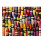 Colorful Crayons Postcard