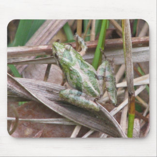 Colorful Cricket Frog Mouse Pad