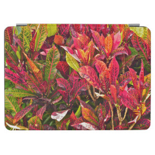 """""""COLORFUL CROTON PLANT/RED/GREEN/ ORANGE/YELLOW"""" iPad AIR COVER"""