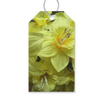 Colorful Customizable Yellow Daffodils Gift Tags
