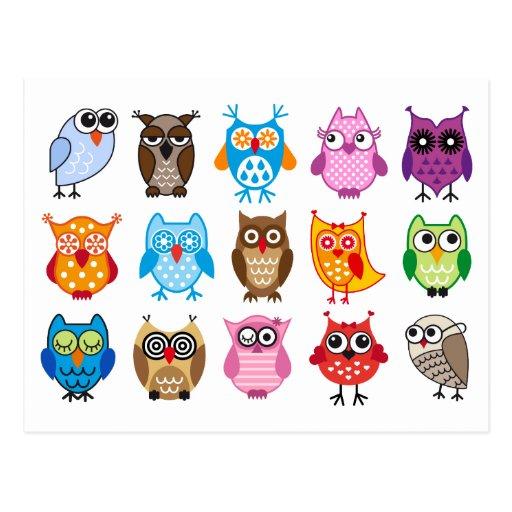 Colorful cute owls postcard
