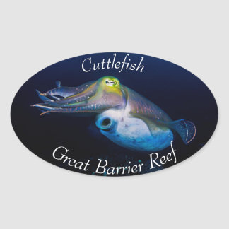 Colorful Cuttlefish on the Great Barrier Reef Oval Sticker