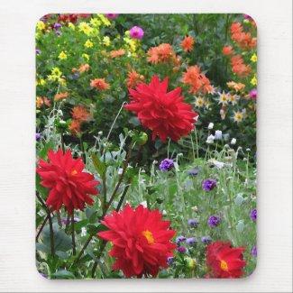 Colorful Dahlia Flower Garden Mousepad
