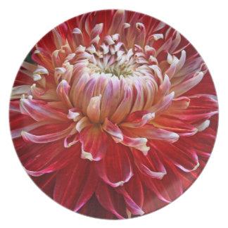 Colorful Dahlia Melamine Plate
