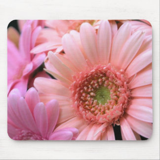 Colorful Daisies Mouse Pad