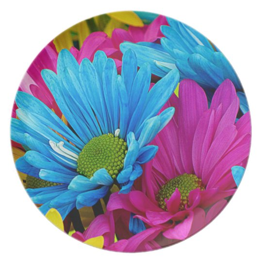 Colorful Daisies Plate