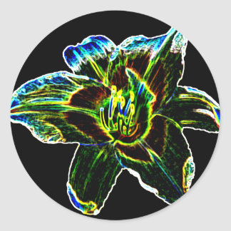 Colorful Daylily Classic Round Sticker