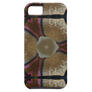 colorful design iPhone SE/5/5s case