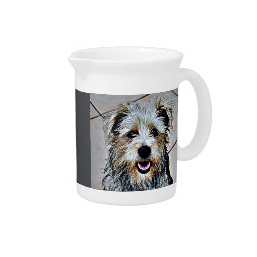 Colorful Dog Drink Pitcher