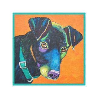 """Colorful Dog Portrait """"Cooper"""" 12"""" x 12"""", 1.5'"""" Canvas Print"""