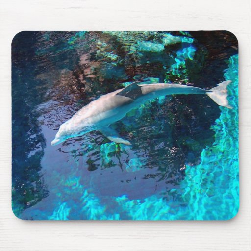 Colorful Dolphin Mouse Mats