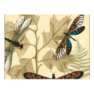 Colorful Dragonflies Floating Above Leaves Postcard