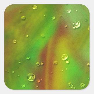 colorful dreams, green, wet square sticker