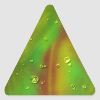 colorful dreams, green, wet triangle sticker