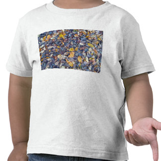 Colorful Dried Leaves Texture Tees