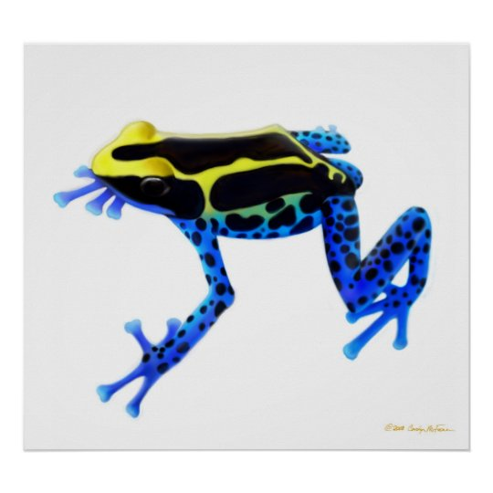 Colorful Dyeing Poison Frog Print