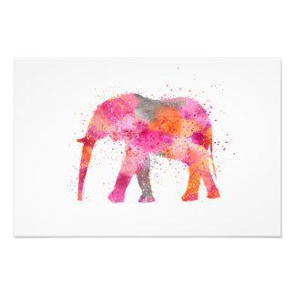 Colorful Elephant Photo Print