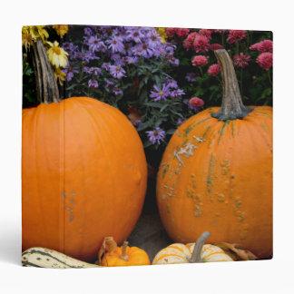 Colorful fall decorative pumpkin display 3 ring binder