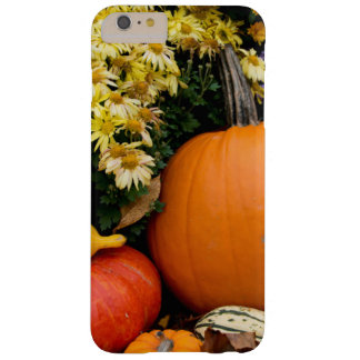 Colorful fall decorative pumpkin display barely there iPhone 6 plus case