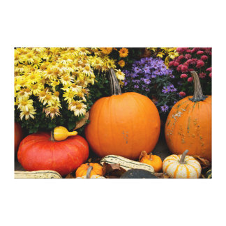 Colorful fall decorative pumpkin display canvas print