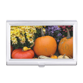 Colorful fall decorative pumpkin display case for business cards
